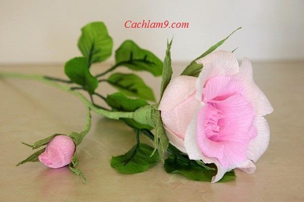 Cách làm hoa hồng bằng giấy cực đẹp