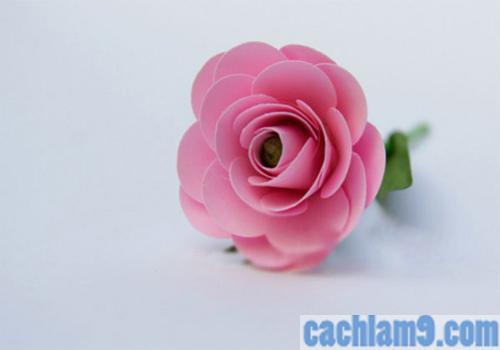 Tạo hình hoa hồng bằng giấy đẹp
