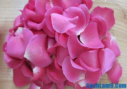 Hướng dẫn cách làm nước hoa hồng từ cánh hoa hồng tươi