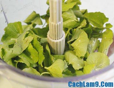 Thực hiện làm sinh tố đậu xanh rau má