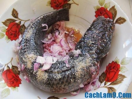 Sơ chế nguyên liệu làm cá lóc hấp sả, so che nguyen lieu lam ca loc hap sa