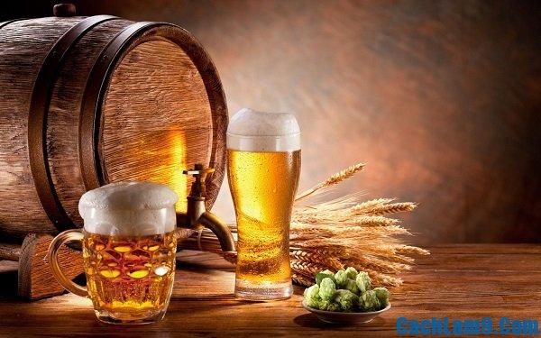 Cách làm đẹp bằng bia