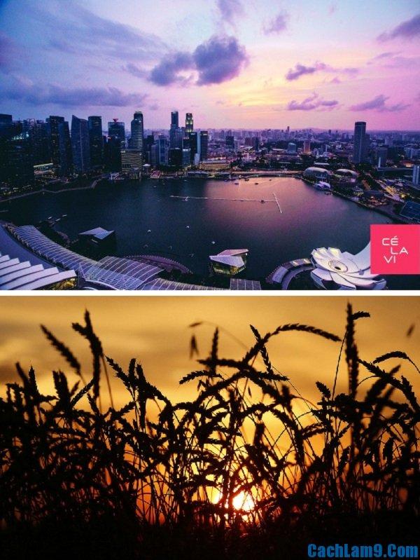 Những địa điểm ngắm hoàng hôn tuyệt nhất Singapore