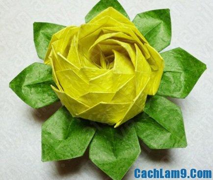 Cách gấp hoa sen bằng giấy