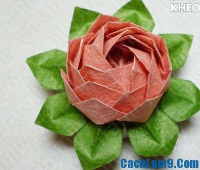Hướng dẫn gấp hoa sen bằng giấy