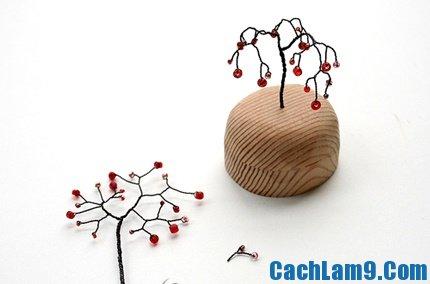 cach-lam-cay-bon-sai-7