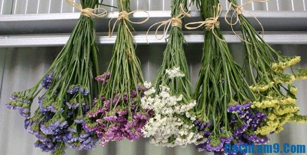 Cách làm khô hoa tươi
