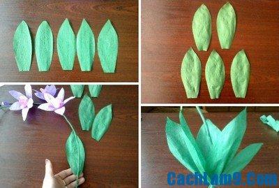 Hướng dẫn làm hoa phong lan giấy