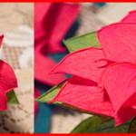 Cách làm hoa trạng nguyên đẹp và ý nghĩa