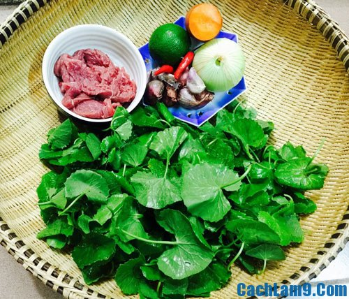 Nguyên liệu cần chuẩn bị cho cách làm nộm rau má thịt bò