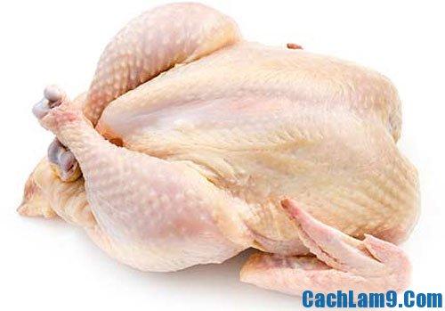 Nguyên liệu luộc gà