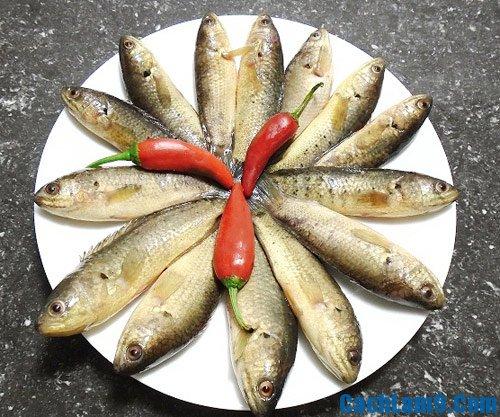 Nguyên liệu nấu bún cá rô đồng