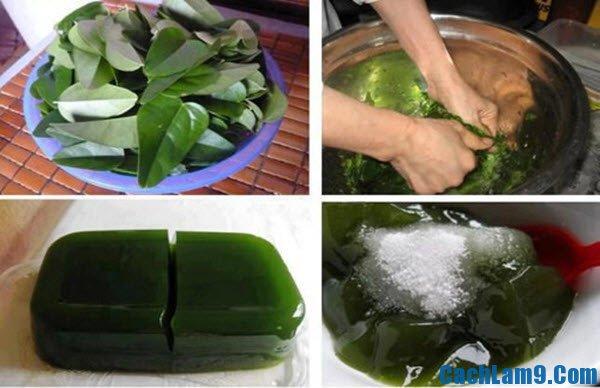 Hướng dẫn cách làm thạch găng ngọt mát thơm dịu: Bí quyết làm thạch găng ngon, dễ làm