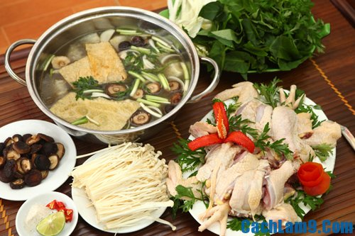 Cách nấu lẩu gà thuốc bắc ngon: Nguyên liệu nấu lẩu gà thuốc bắc
