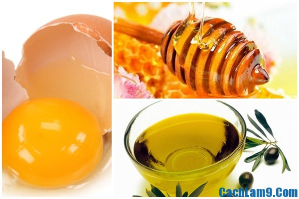 Cách dưỡng trắng da bằng trứng gà mật ong dầu dừa, cach duong trang da bang trung ga mat ong dau dua