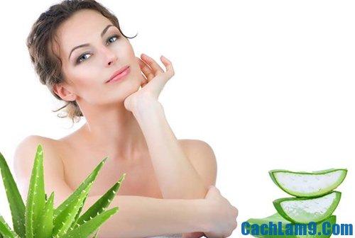 Cách làm đẹp da bằng nha đam, hướng dẫn các phương pháp làm đẹp da với nha đam