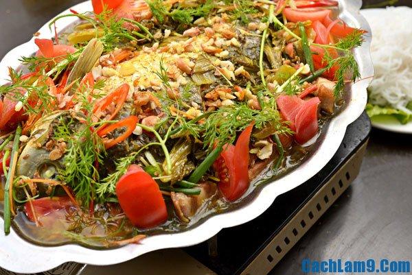 Cách làm cá chép om dưa, nấu cá chép om dưa như thế nào ngon, khử được mùi tanh?