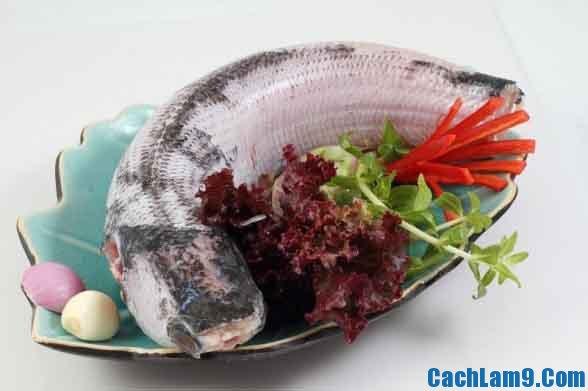 Nguyên liệu, công thức và cách làm cá lóc hấp nấm đông cô
