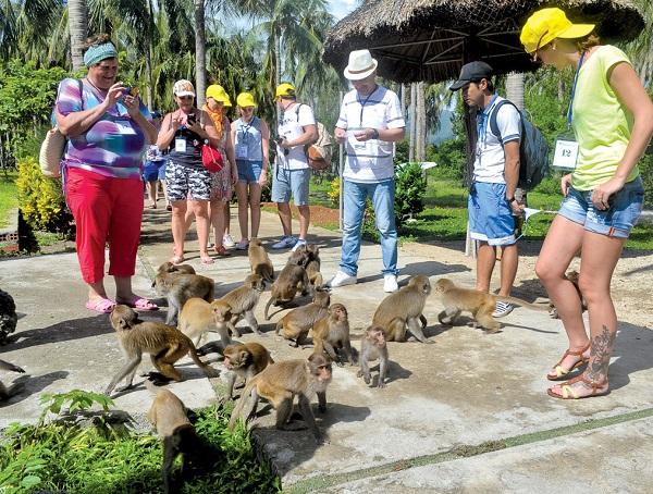 Địa điểm du lịch ở Nha Trang đẹp, nổi tiếng: Đảo khỉ Nha Trang