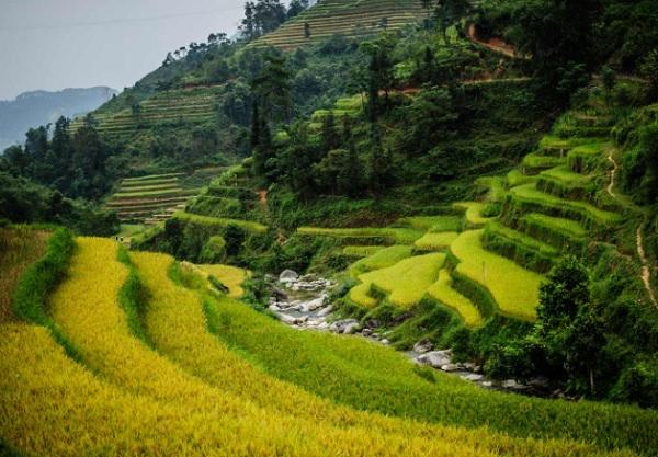Hoàng Su Phì. Địa điểm tham quan ở Hà Giang